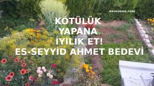 ES-SEYYİD AHMED BEDEVİ